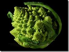 Sjov blomkålbroccoli