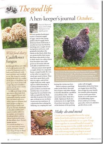 Lidt oplysning om hønsehold