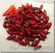 Chili sept 2013 (1)