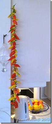 Chili i lange baner (4)