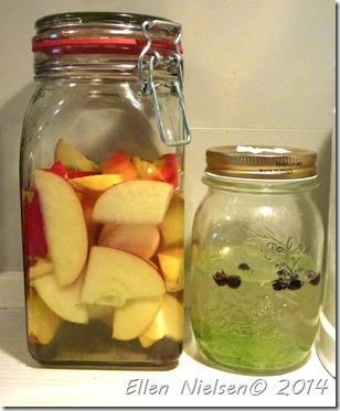 Æblesnaps og enebær-limesnaps in spe