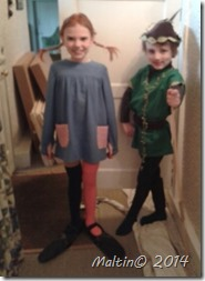 World Book Day -Pippi & Robin