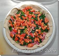 Ramsløgtærte (3)