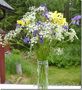 Liljer iris og kørvel (1)