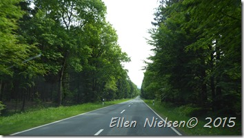 Grøn vej