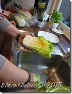 Kimchi (3)