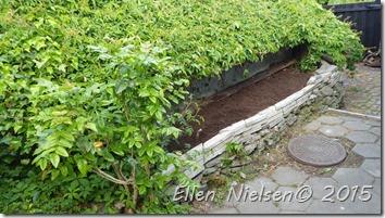 Krydderurtebed planteparat