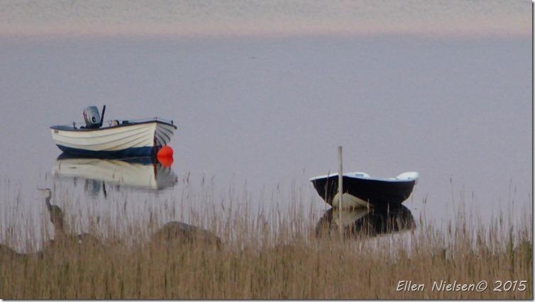 Med fiskehejre 2