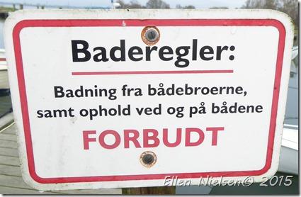 Sortsø v Stubbekøbing (8)
