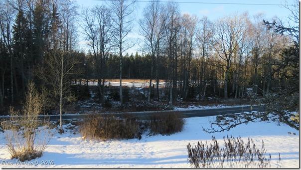 En iskold vinterdag