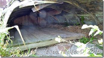 Shelteret (2)