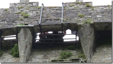 Blarney Castle (18)
