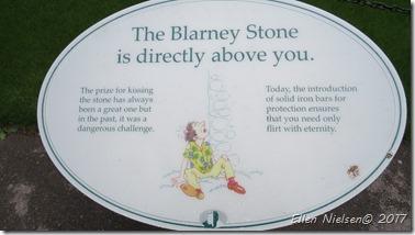 Blarney Castle (8)