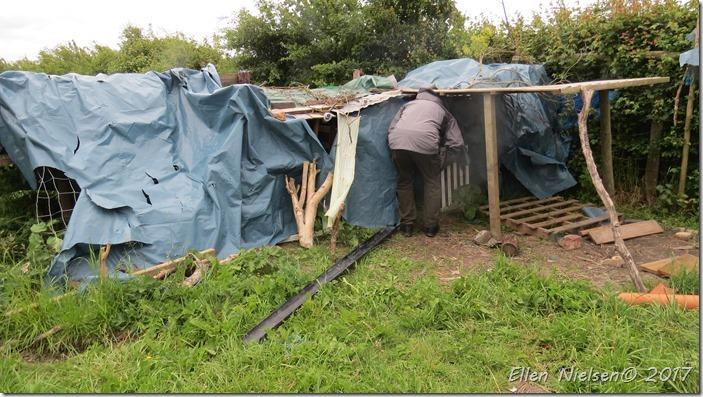 Base Camp (8)