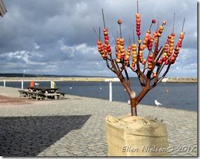 Æblefestival i Kivik (2)