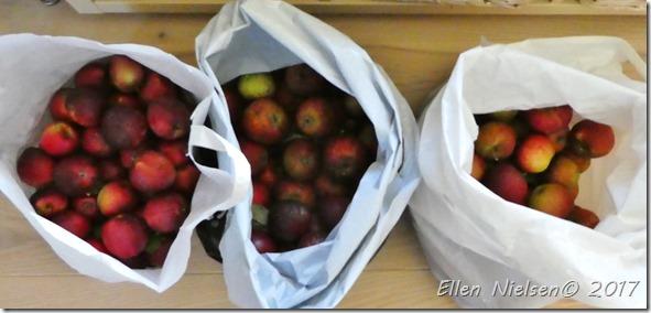 Æbleforæring