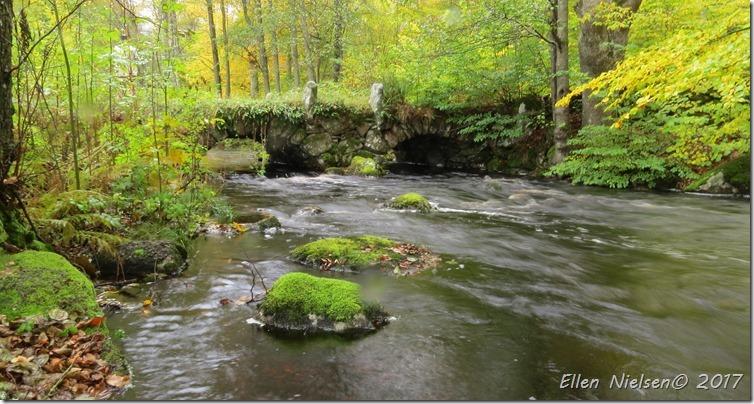 Den gamle stenbro ved Vilshult (3)