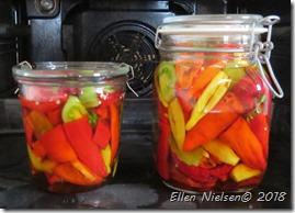 Syltede henkogte chili
