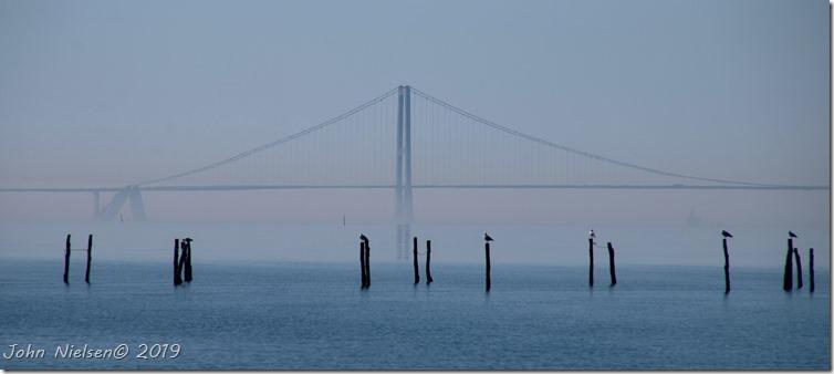 Storebæltsbroen set fra Reersø havn
