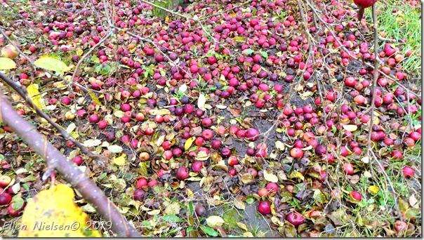 Stadig mange æbler