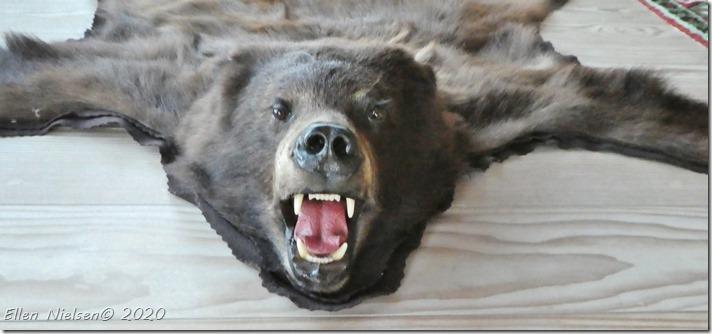 Hans' bjørn