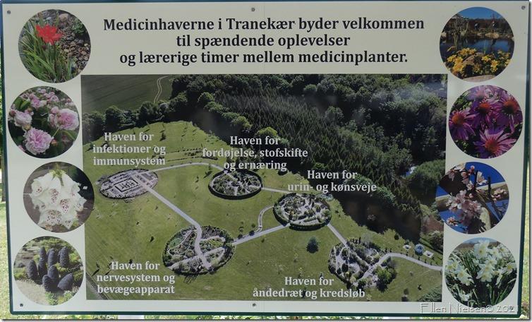 Medicinhaven Tranekær slot (1)